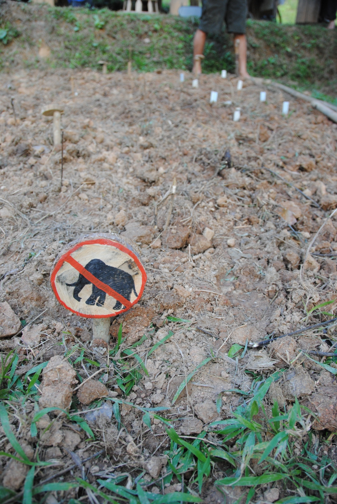 soil and thread